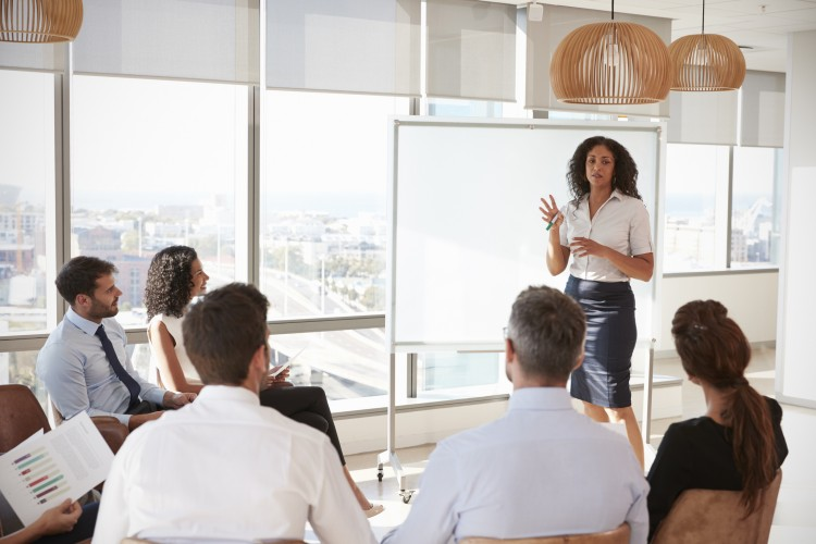 Strategic Leadership Open Programme: Woman presenting to group of professional people